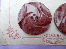 6 Huge Antique/Vintage Celluloid Art Deco Marbled Red French Buttons on Original Shop Card