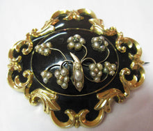 Antique Victorian Gold Mourning Brooch with Enamel and Seed Pearls