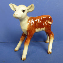 Beswick Hereford Calf Model No 901B