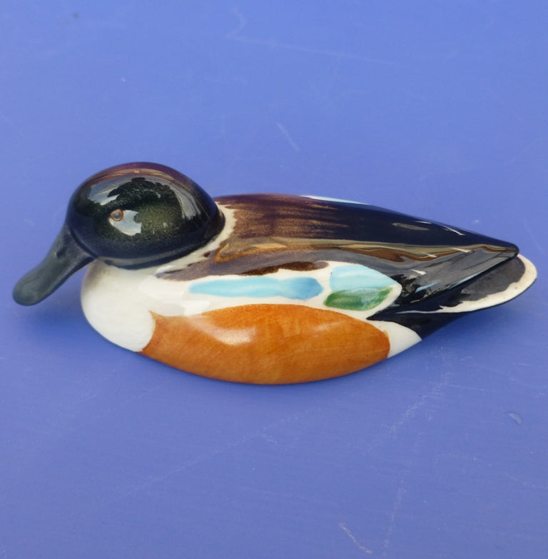 Beswick Peter Scott Wildfowl - Shoveler Duck Model No 1528