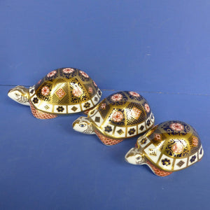Royal Crown Derby Limited Edition Paperweights Yorkshire Rose Tortoise Family (Boxed)