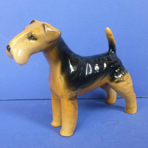 Beswick Lakeland Terrier Dog Model No 2448