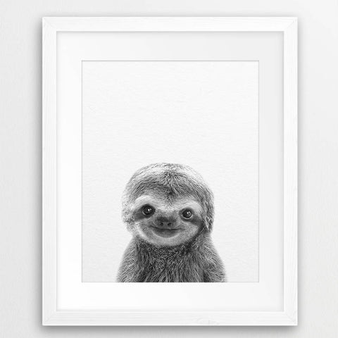 Cute Baby Sloth Wall Art Canvas Print