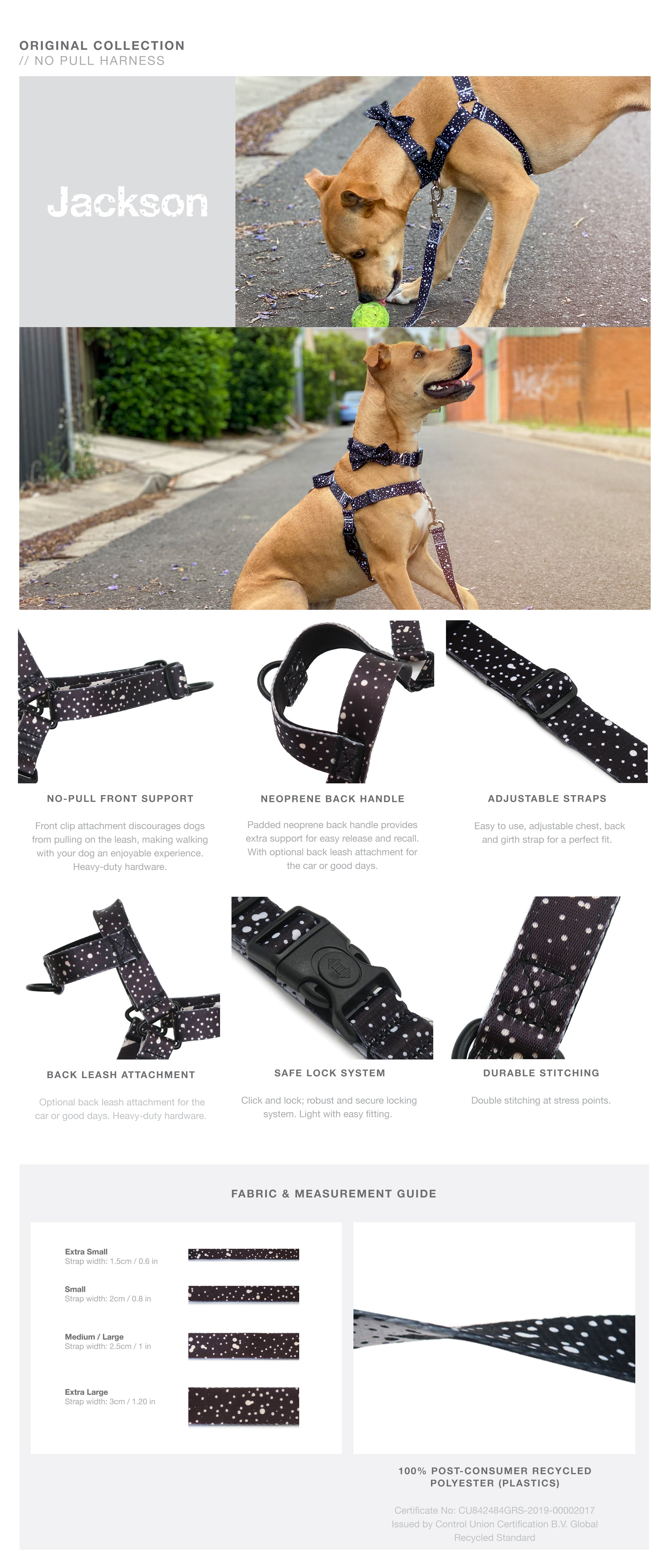 Jackson OG No-Pull Training Harness with Padded Buddy