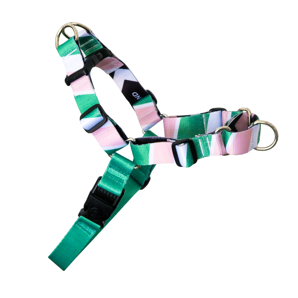 Emerald City Ruff N' Tuff No Pull Harness w Padded Buddy