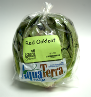 Red Oakleaf, Young (3-5 oz)