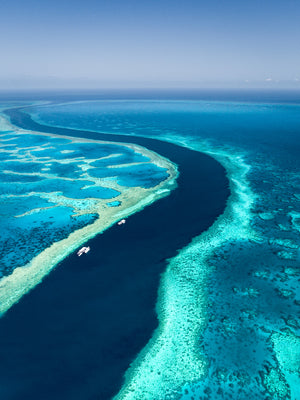 """Hardy Reef""- Great Barrier Reef Whitsundays"