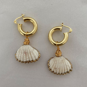 Shell Tropez Earrings