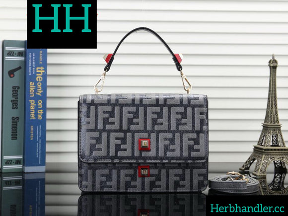 HH Fendi Gray Handbag