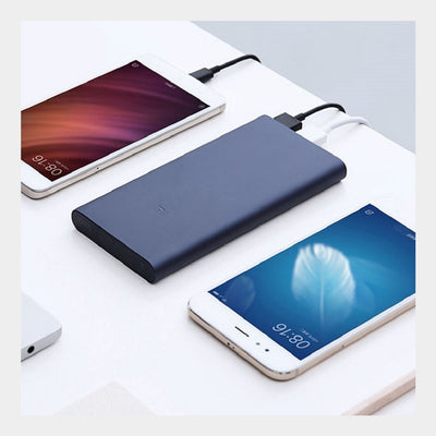 ORIGINAL Xiaomi Dual USB Port Mi Powerbank 10000mAh