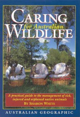 Caring For Australian Wildlife Sharon White