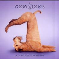 Yoga Dogs  Get in Touch With Your Inner Pup