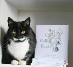 A Cat Called Panda  Melanie Arora  Illustrated by Charlie Brandon-King