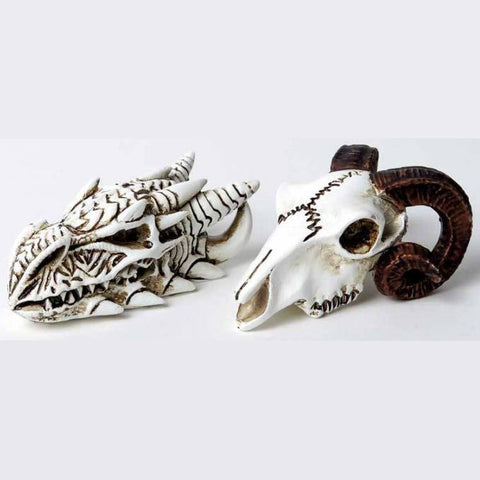 Alchemy Dragon Skull Miniture