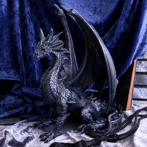 Black Wing Dragon