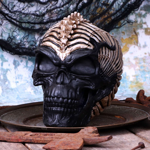 James Ryman Spine Head Skull