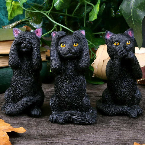 Three Wise Felines Cats