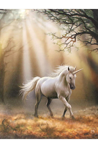 Anne Stokes Glimpse Unicorn Picture | Angel Clothing