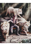 Anne Stokes Power of Three Picture | Angel Clothing