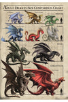 Anne Stokes Dragon Size Chart Greetings Card | Angel Clothing