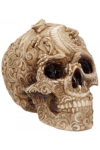 Cranial Drakos Skull 19.5cm | Angel Clothing