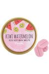 Kiwi Watermelon Eco Soy Wax Melts | Angel Clothing