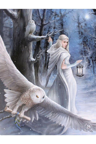 Anne Stokes Midnight Messenger Picture | Angel Clothing
