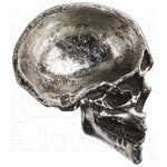Alchemy Gothic Half Skull Trinket Dish V60 | Angel Clothing
