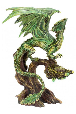 Anne Stokes Adult Forest Dragon | Angel Clothing