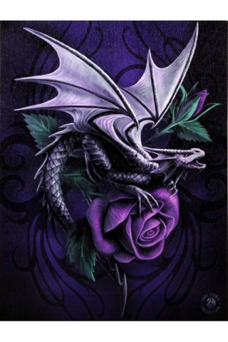 Anne Stokes Dragon Beauty Picture | Angel Clothing