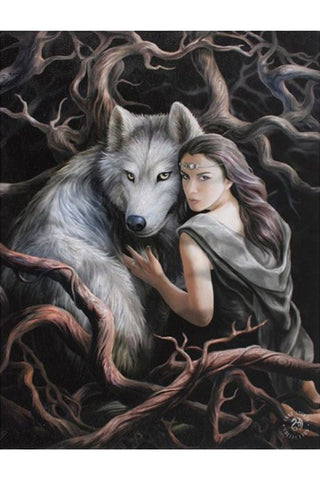 Anne Stokes Soul Bond Wall Picture | Angel Clothing