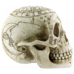 Astrological Skull | Angel Clothing