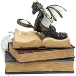 Miniature Scholars Trinket Box 13cm | Angel Clothing