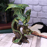 Anne Stokes Adult Forest Dragon 25.5cm | Angel Clothing