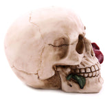 Decorative Skull with Single Red Rose | Angel Clothing