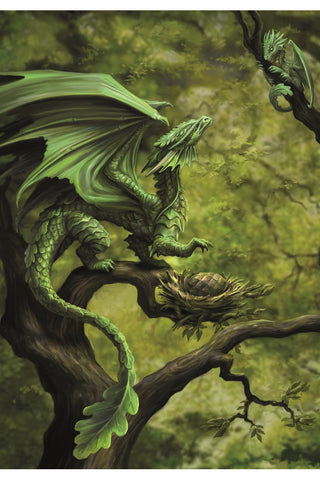 Anne Stokes Forest Dragon Card | Angel Clothing