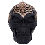 James Ryman Spine Head Skull | Angel Clothing