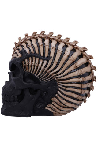PRE-ORDER James Ryman Spine Head Skull | Angel Clothing