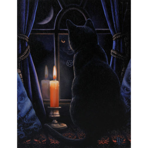 Lisa Parker Midnight Vigil Picture | Angel Clothing