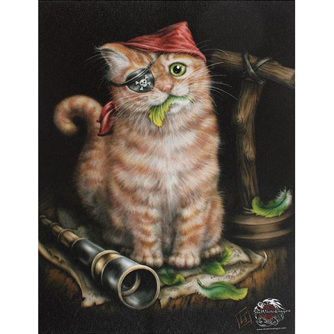Small Pirate Kitten Canvas Picture by Linda Jones 19cm X 25cm - Angel Clothing
