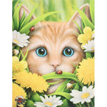 Linda Jones Summer Cat Picture | Angel Clothing