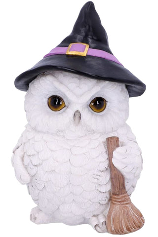 Snowy Magic Witch Owl | Angel Clothing