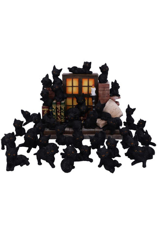 The Witches Litter Display and 12 Cats | Angel Clothing