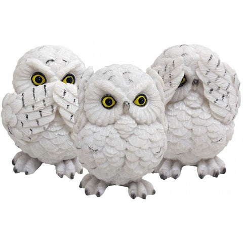 Three Wise Owls | Angel Clothing