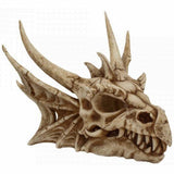 Lumo Lumiescent Dragon Skull with LED Lights | Angel Clothing