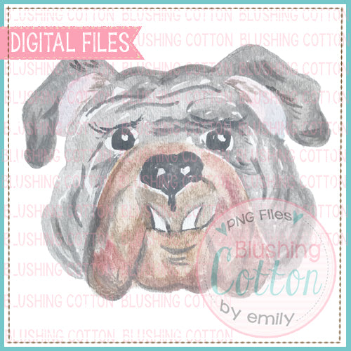 Bulldog Grey Face Watercolor PNG BC