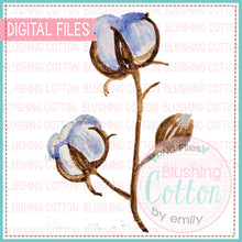 Load image into Gallery viewer, COTTON BOLL WATERCOLOR ART PNG