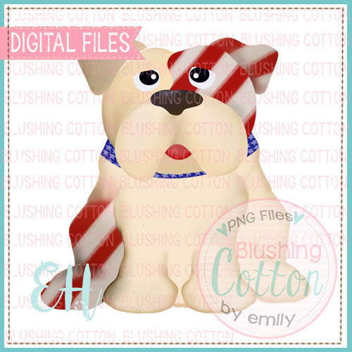 RED AND WHITE STRIPES BULLDOG   BCEH