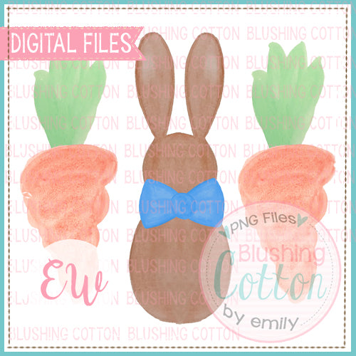 BOY BUNNY AND CARROTS WATERCOLOR DESIGN BCEW