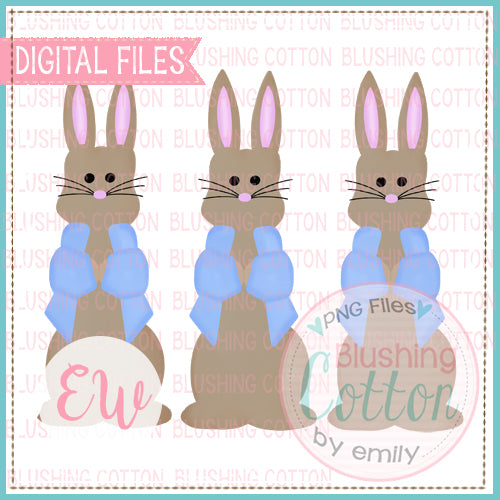 MR BUNNY BLUE JACKET TRIO WATERCOLOR DESIGN BCEW